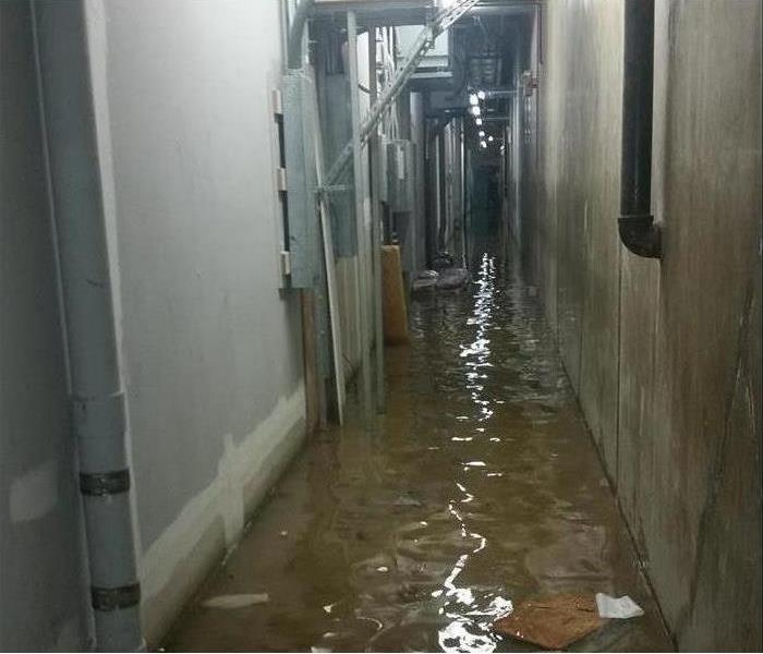Water Removal of a Flooded Local Business Before