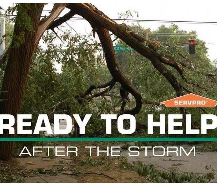 Fallen tree and Servpro logo Ready to Help After the Storm