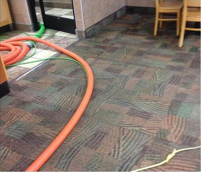 Carpet Cleaning - Before & After After