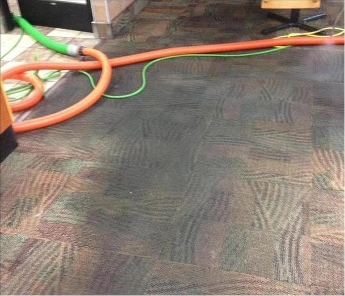 Carpet Cleaning - Before & After Before