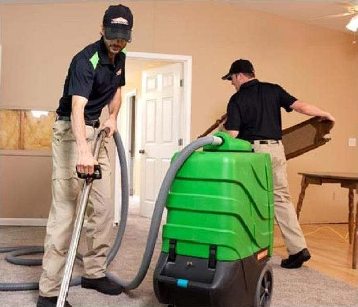 Cleaning How to Clean and Maintain Carpets and Upholstery after the Holiday Celebrations