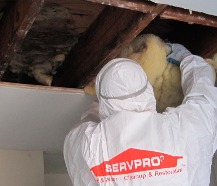 Mold Remediation Getting Your Ducts In Order