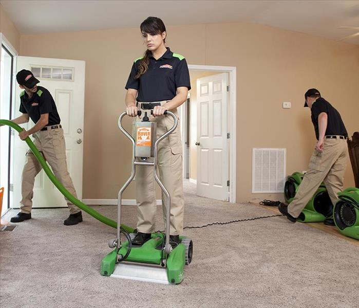 Servpro of Martin County cleaning a carpet