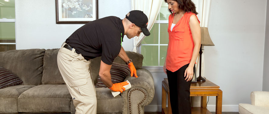 Stuart, FL carpet upholstery cleaning